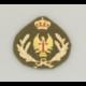 Galleta Oficial Ejercito de Tierra