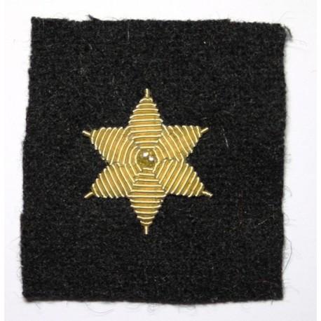 Galón estrella bordada 6 puntas